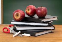 portal dla nauczycieli edukacji wczesnoszkolnej